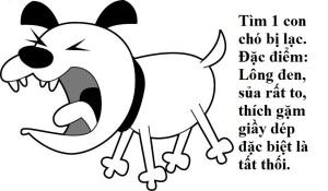 timcholac